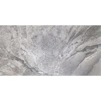 "12"" x 24"" Rectified Porcelain Floor And Wall Tiles - Glazed Silver Porcelain"