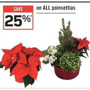 All Poinsettias - 25% off